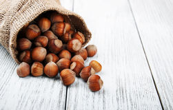 Organic hazelnuts in bag Stock Photos