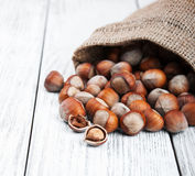 Organic hazelnuts in bag Royalty Free Stock Image