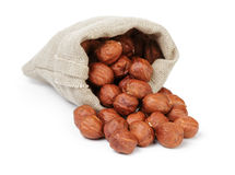 Organic hazelnuts poured out of the pouch Stock Photography