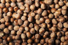 Organic hazelnuts texture background from above perspective Stock Photo