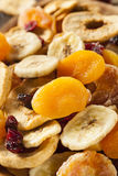 Organic Healthy Assorted Dried Fruit Stock Photography