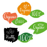 Organic healthy labels with calligraphy and logos on hand drawn leaves. Vector. Organic calligraphy labels with leaves, orange, heart and 100% logos Stock Image
