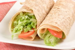 Organic healthy turkey wrap Royalty Free Stock Photos