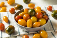 Organic Heirloom Cherry Tomatoes. In a Bowl royalty free stock image