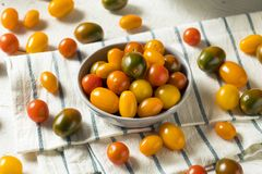 Organic Heirloom Cherry Tomatoes. In a Bowl royalty free stock photography