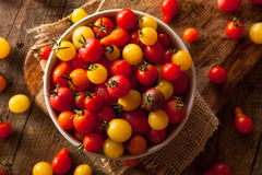 Organic Heirloom Cherry Tomatos Royalty Free Stock Photos