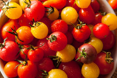 Organic Heirloom Cherry Tomatos Royalty Free Stock Image