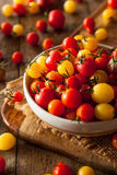 Organic Heirloom Cherry Tomatos Stock Images