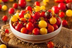Organic Heirloom Cherry Tomatos Royalty Free Stock Images