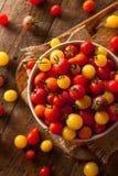 Organic Heirloom Cherry Tomatos Stock Image