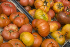 Organic Heirloom Tomatoes from the Farmers Market Stock Photos