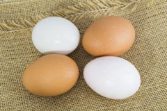 Organic Hen eggs and Duck eggs Stock Image