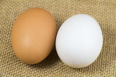 Organic Hen eggs and Duck eggs Royalty Free Stock Image