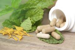 Organic Herb capsule Royalty Free Stock Photo