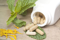 Organic Herb capsule Royalty Free Stock Photography