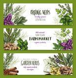 Organic herb and spices farm market banner set Stock Image