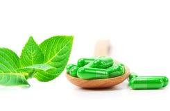 Organic herbal green medicine capsule Royalty Free Stock Photo