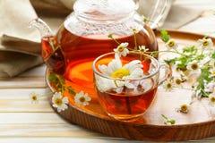 Organic herbal green tea Stock Photos