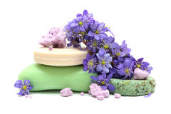Organic herbal soap, foam bath, dry shampoo Stock Photo