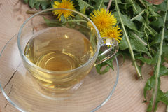 organic herbal tea in a cup Stock Image