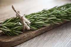 Organic herbs Stock Photography