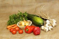 Organic homegrown vegetable Stock Image