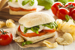 Organic Homemade Caprese Sandwich Royalty Free Stock Image