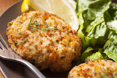 Organic Homemade Crab Cakes Stock Photos