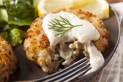 Organic Homemade Crab Cakes Stock Images