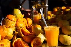 Organic homemade fresh orange and lemon juice stock image