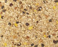 Organic homemade Granola cereal. Texture oatmeal granola or muesli as background. Top view or flat-lay. stock image