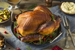 Organic Homemade Smoked Turkey Dinner for Thanksgiving. With Sides stock photography