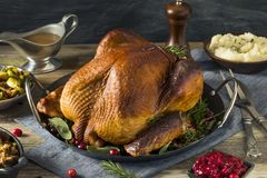 Organic Homemade Smoked Turkey Dinner for Thanksgiving. With Sides stock photos