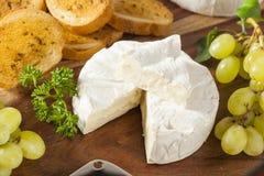 Organic Homemade White Brie Cheese Stock Photo