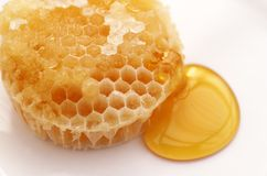Organic Honey. Detail close up of Organic Honeycomb Stock Image
