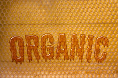 Organic Honey Royalty Free Stock Photo