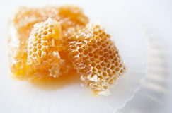 Organic honeycomb on white plate and white surfac Stock Photos