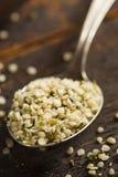 Organic Hulled Hemp Seeds Royalty Free Stock Photo