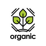 Organic icon with green plant leaf Royalty Free Stock Photo
