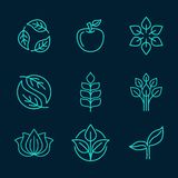 Organic icons in outline style Stock Photos