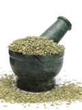 Organic Indian Fennel seed (Foeniculum vulgare) on marble pestle. And over white background royalty free stock photos