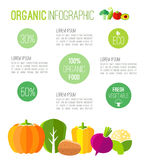 Organic infographic fresh vegetables illustration Royalty Free Stock Photo