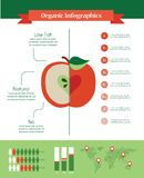 Organic infographics with apple and charts Stock Photo