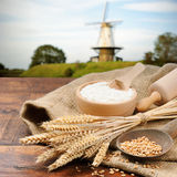 Organic ingredients for bread preparation Royalty Free Stock Photo