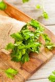 Organic Italian Flat Leaf Parsley Royalty Free Stock Photography