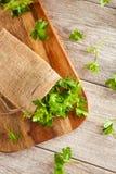 Organic Italian Flat Leaf Parsley Royalty Free Stock Images