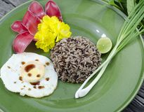 Organic jasmine rice whit fried egg. Royalty Free Stock Photo
