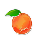 100% Organic juicy peach. Vector of tasty ripe peach with 100% organic title Stock Image