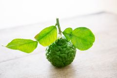Organic kaffir lime on wooden background Royalty Free Stock Photo