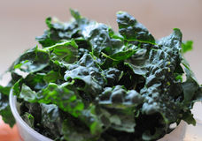 Organic Kale Stock Photography